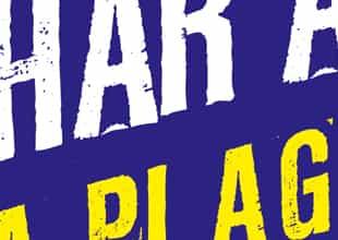 Flyer de présentation Avel Char à voile