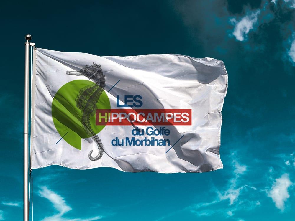 Les Hippocampes du Golfe du Morbihan - Adaptation drapeau